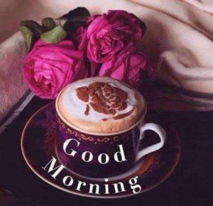 Good-Morning-Flower