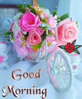 Best 1000 Good Morning Wishes