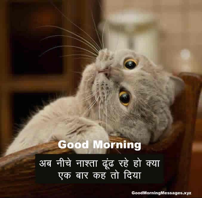 Best Subah Ke Liye Majedar Shayari Good morning Shayari in Hindi funny