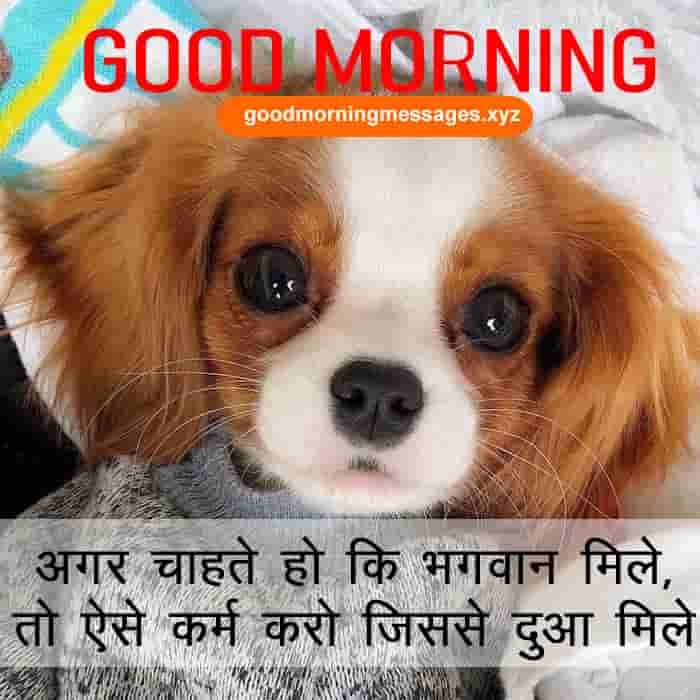 Cute-Puppy-Good-Morning-Pictures-With-Message-In-Hindi-3